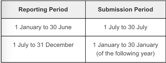 Submission of semi-annual returns